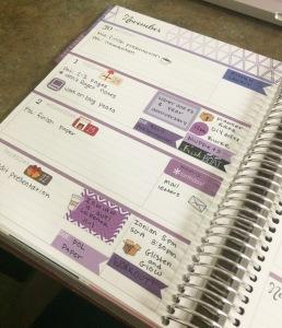 Erin Condren Life Planner Page 1