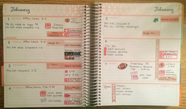 A Week in My Erin Condren Feb 1 - Feb 7